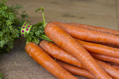 Manojo de zanahorias recientemente escogidas del jardín Foto de archivo