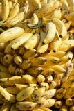 Manojo del plátano Foto de archivo