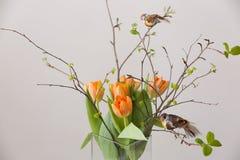 Manojo fresco de la primavera de tulipanes y hojas anaranjadas del verde y dos pequeños pájaros en florero de cristal cristal agr Imagenes de archivo