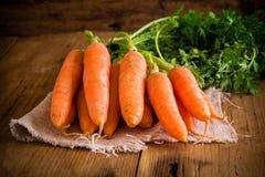 Manojo fresco de las zanahorias en fondo de madera fotografía de archivo