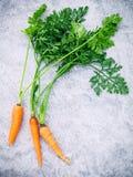 Manojo fresco de las zanahorias en la tabla de madera Zanahorias frescas crudas con la cola Imagen de archivo