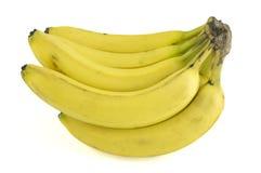Manojo fresco del plátano Foto de archivo