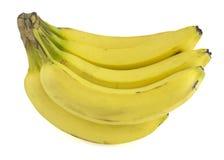 Manojo fresco del plátano Imagen de archivo