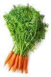 Manojo grande de zanahorias frescas con las tapas verdes Imagen de archivo