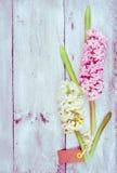 Manojo rosado y blanco del jacinto con la muestra en el fondo de madera, tarjeta de la primavera Imágenes de archivo libres de regalías