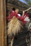 Manojos de espigas de trigo Imagenes de archivo
