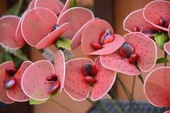 Manojos de flores italianas del caramelo Fotos de archivo libres de regalías
