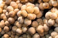 Manojos de fruta fresca de Longkong fotos de archivo libres de regalías