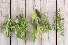Manojos de las hierbas fotografía de archivo libre de regalías