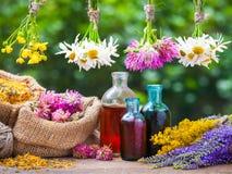 Manojos de las hierbas curativas, botella de tinte, bolsos con las plantas secadas fotos de archivo libres de regalías