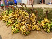 Manojos de plátanos maduros excesivos Imágenes de archivo libres de regalías
