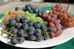 Manojos de uvas maduros frescos en una tabla de patio soleada Imagen de archivo libre de regalías
