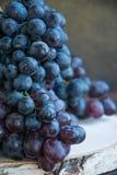 Manojos de uvas oscuras en un soporte de madera foto de archivo libre de regalías
