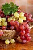 Manojos de uvas rojas y verdes Imagenes de archivo
