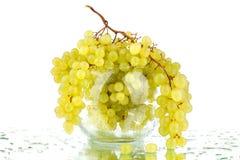 Manojos de uvas verdes en el florero redondo de cristal en el fondo blanco del espejo con descensos de la reflexión y del agua ai imagen de archivo libre de regalías