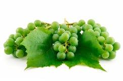 Manojos de uvas verdes maduras con la hoja aislada Fotografía de archivo