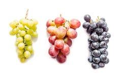 Manojos de uvas verdes y azul marino rojos aisladas en blanco Foto de archivo libre de regalías