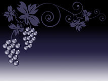 Manojos de uvas y de hojas stock de ilustración