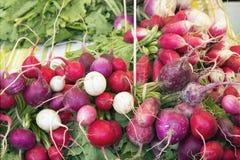 Manojos del rábano de la herencia en el mercado de los granjeros Fotos de archivo