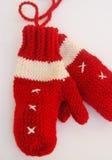 Manoplas del Knit Fotografía de archivo libre de regalías