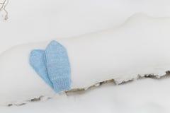 Manoplas en nieve Guantes hechos punto azul en invierno Foto de archivo