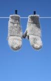 Manoplas que cuelgan para secarse Foto de archivo libre de regalías