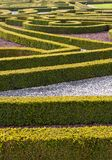 Hedge Garden. Manor hedge garden, with gravel royalty free stock images