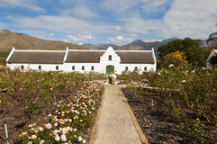 Manor house on wine farm with a rose garden. White manor house on a wine farm with a rose garden and a pathway with mountains in the background Royalty Free Stock Image
