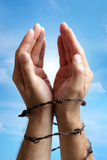 Manos atadas con alambre de púas Imagen de archivo libre de regalías