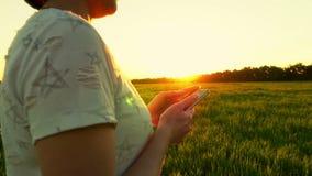 Manos atractivas jovenes de la mujer usando smartphone en fondo de la puesta del sol en césped verde en la cámara lenta metrajes