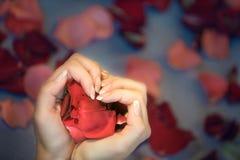 Manos bajo la forma de corazón Foto de archivo libre de regalías