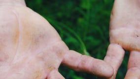 Manos Calloused de un hombre que ha trabajado toda su vida en el campo con sus manos Ciérrese encima de la vista de las manos del almacen de video