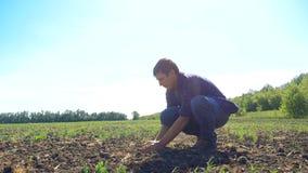 Manos campesinas del granjero del hombre que sostienen el suelo fresco vídeo de la cámara lenta la suciedad de tierra del hombre  metrajes