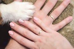 Manos casadas de la pareja del hetero con una pata del perro como muestra de una familia con un perro foto de archivo