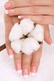 Manos con la cosecha del algodón Imagen de archivo