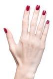 Manos con la manicura roja fotografía de archivo