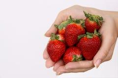 Manos con las fresas Foto de archivo libre de regalías