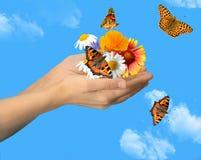 Manos con las mariposas Imagen de archivo