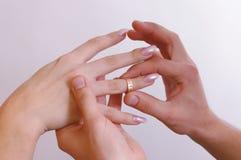 Manos con los anillos Fotografía de archivo