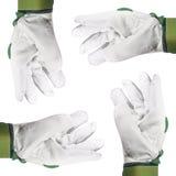 Manos con los guantes, recorte Fotografía de archivo libre de regalías