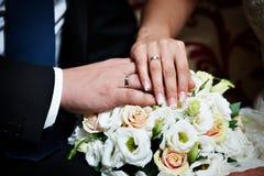 Manos con los recienes casados felices de los anillos de oro de la boda Imagen de archivo libre de regalías