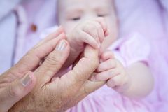 Manos de la abuela que llevan a cabo las manos del bebé Fotografía de archivo