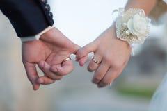 Manos de la boda Fotos de archivo
