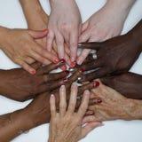 Manos de la capacitación de las mujeres de la diversidad del color foto de archivo libre de regalías