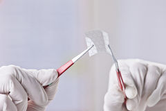 Manos de la demostración científica al pedazo de graphene con la molécula hexagonal. Imágenes de archivo libres de regalías