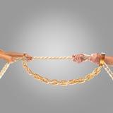 Manos de la gente que tira de la cuerda en un fondo gris Concepto de la competición Imagen de archivo libre de regalías