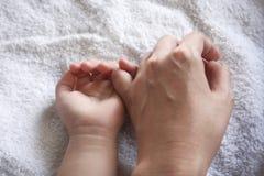 Manos de la madre y del cabrito Imagen de archivo libre de regalías