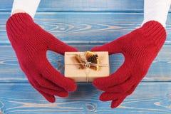 Manos de la mujer en guantes con el regalo adornado para la Navidad o la otra celebración Fotos de archivo