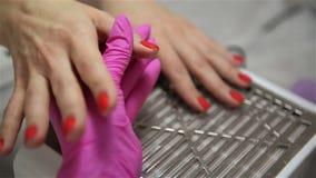 Manos de la mujer en un salón del clavo que recibe una manicura clásica - procedimiento del aceite de la cutícula Cuidado de la m almacen de metraje de vídeo