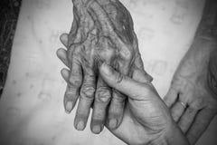 Manos de la mujer mayor Rebecca 36 Fotos de archivo libres de regalías